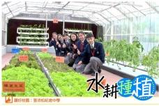 青協「讚好校園」: 張沛松紀念中學水耕種植